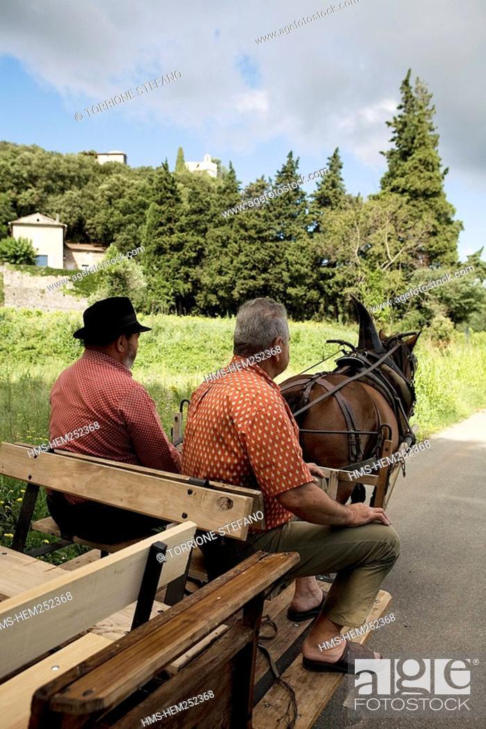Stock Photo: France, Gard, La Roque sur Ceze, labelled Les Plus Beaux Villages de France The Most Beautiful Villages of France, carriage for tourists.