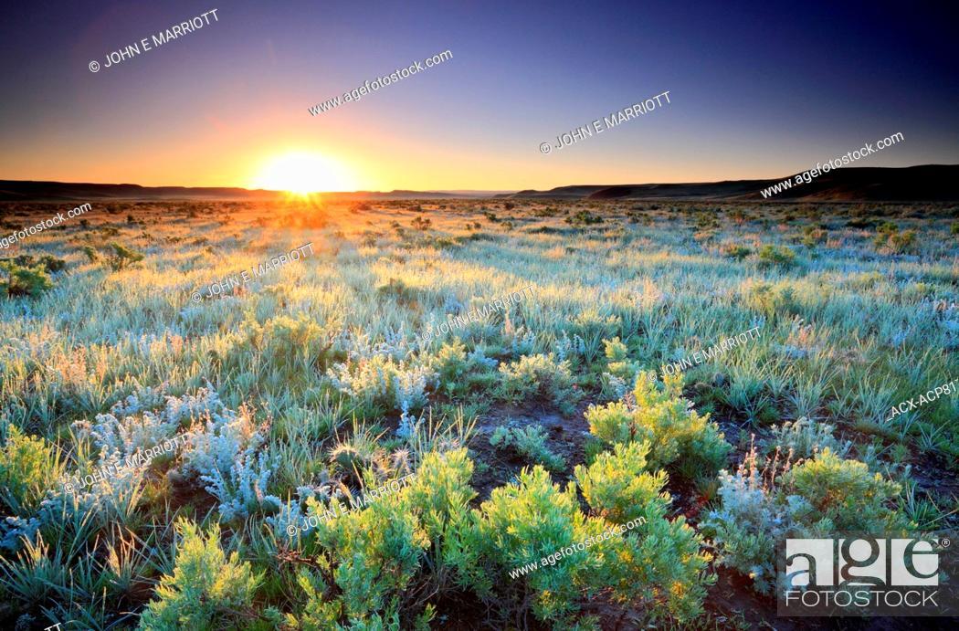 Stock Photo: Sunrise on sage flats near Grasslands National Park, Saskatchewan, Canada on the Canadian prairies.