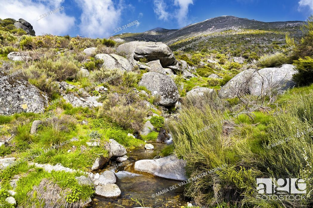 Stock Photo: Stream at Eliza gorge in the Sierra de Gredos and Cabezo hill on the background. Avila. Spain.