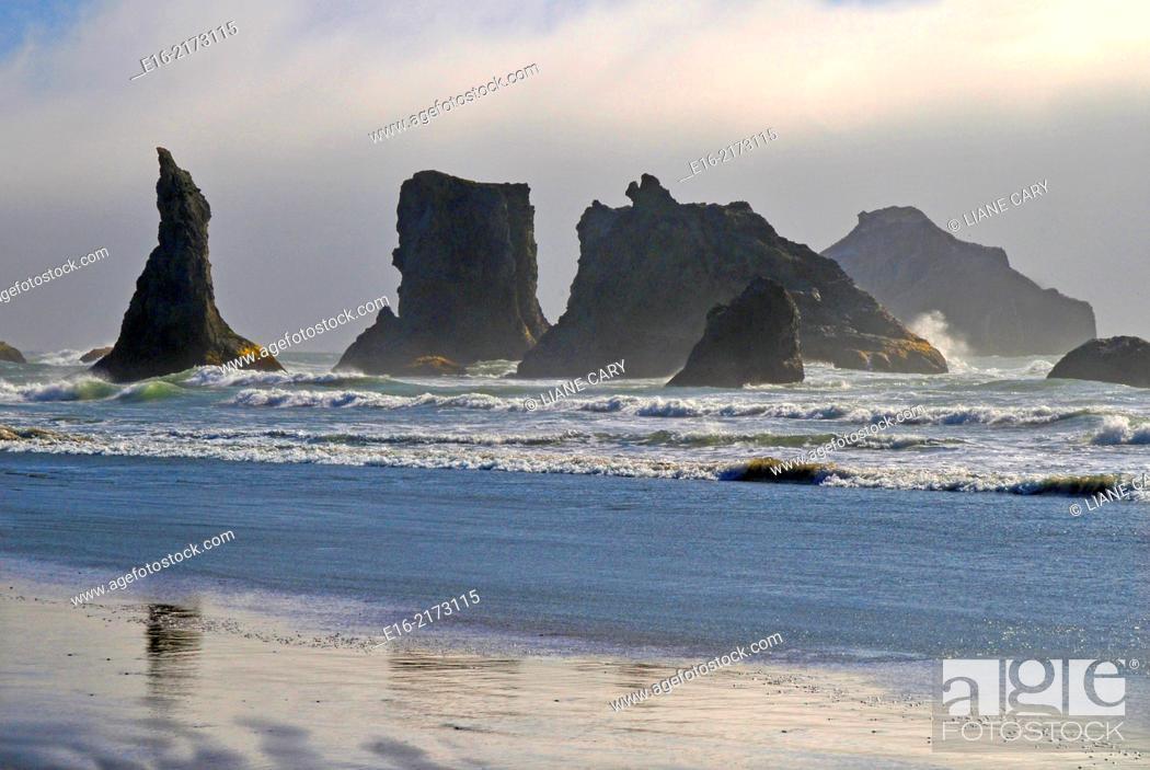 Stock Photo: coast of Bandon Beach.