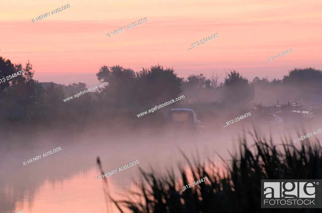 Imagen: France, Camargue, Sunrise on the canal of the Rhône to Sète.