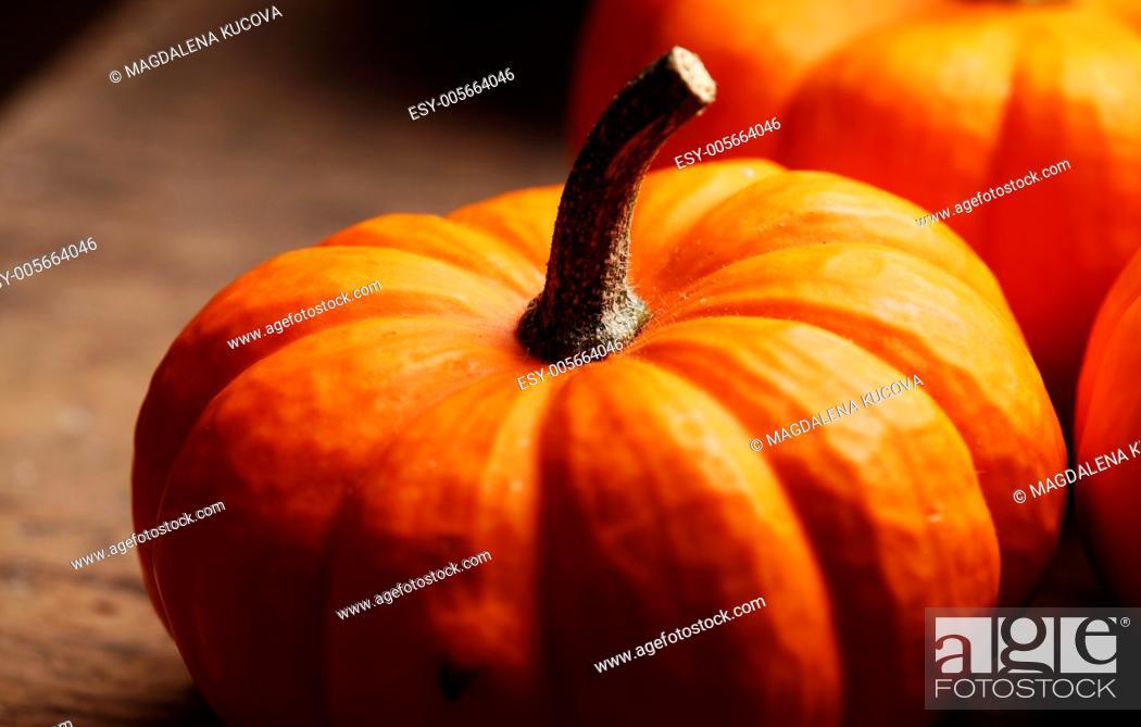 Photo de stock: Close-up of pumpkin on dark wooden background.