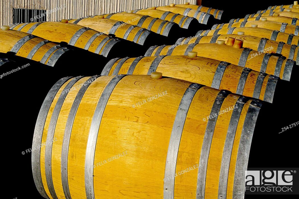 Stock Photo: Verdejo, Rueda wine barrels at La Seca, Castile And Leon, Valladolid, Spain.