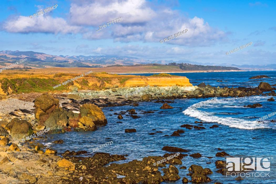 Imagen: Rocky coastline at Piedras Blancas elephant seal rookery, San Simeon, California USA.