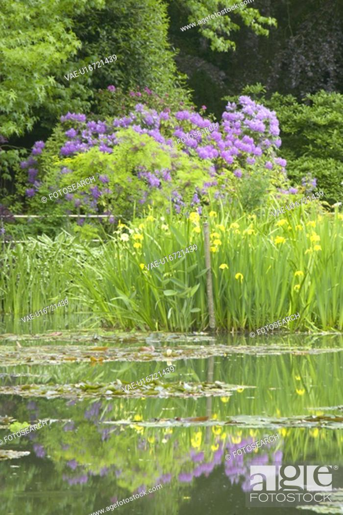 Stock Photo: The Gardens at Giverny with reflections of flowers in pond.