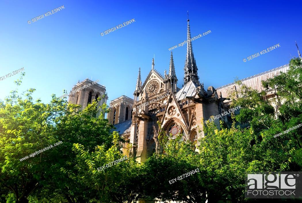Stock Photo: Cathedral Notre Dame de Paris among trees, France.