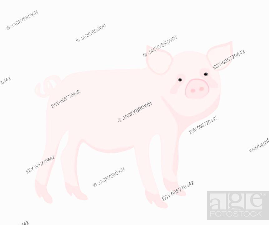 Stock Vector: Cartoon pig. Vector illustration.