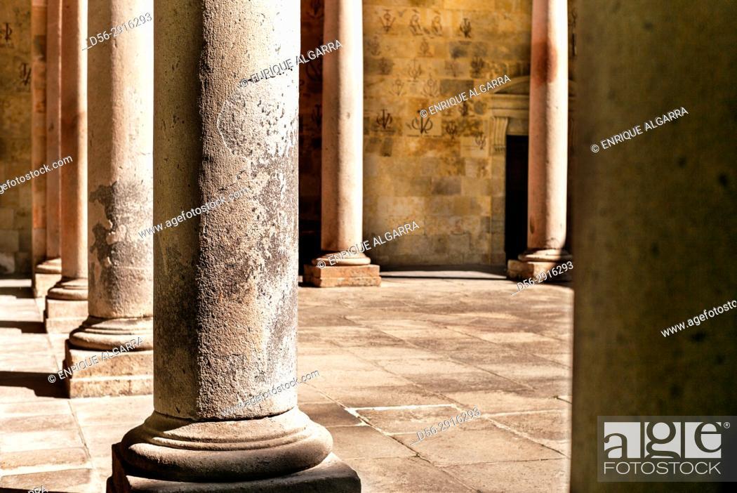 Imagen: Anaya Palace Interior, Colegio de San Bartolomé. University of Salamanca. Castilla y León. Spain. Europe.
