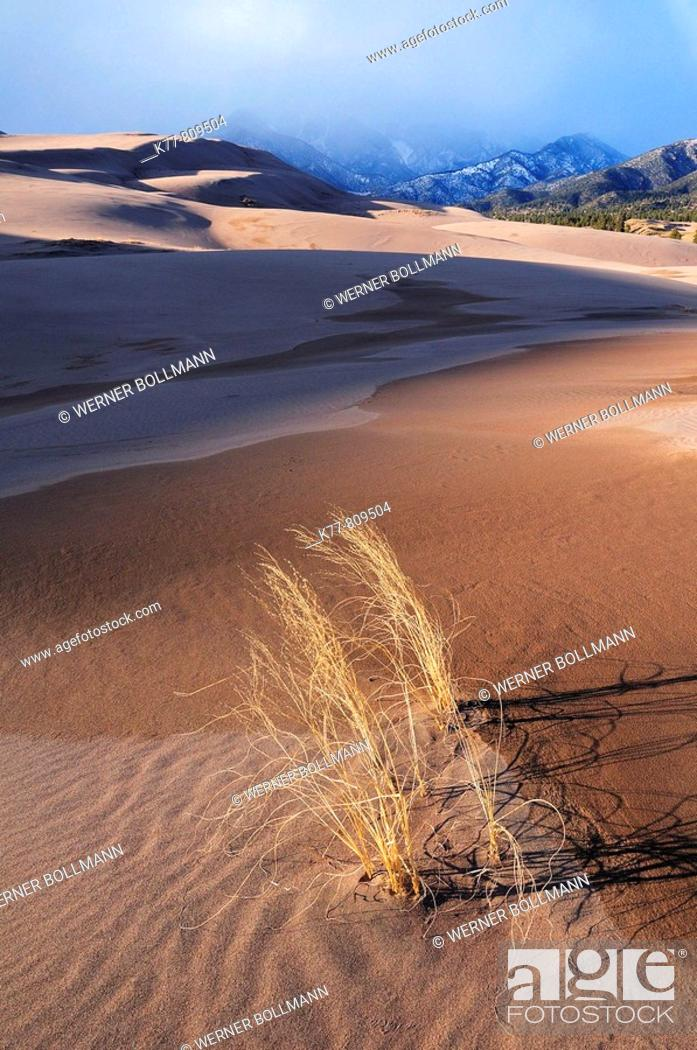Stock Photo: Great Sand Dunes National Park in winter. Colorado, USA.