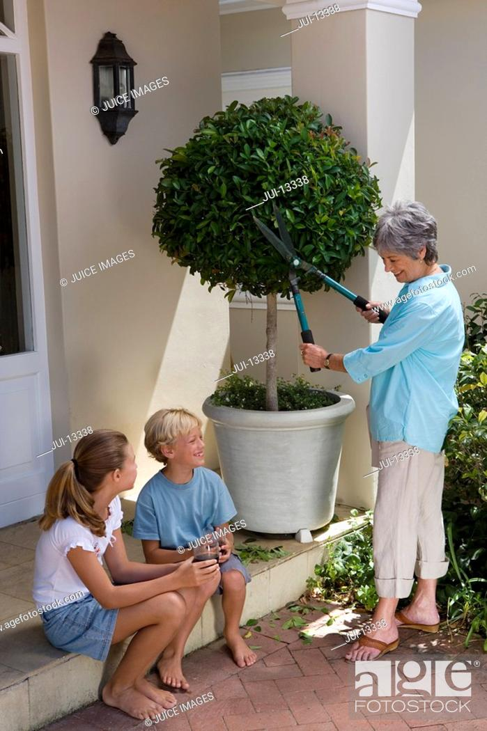 Stock Photo: Mother pruning tree in pot, smiling at son and daughter 8-12.