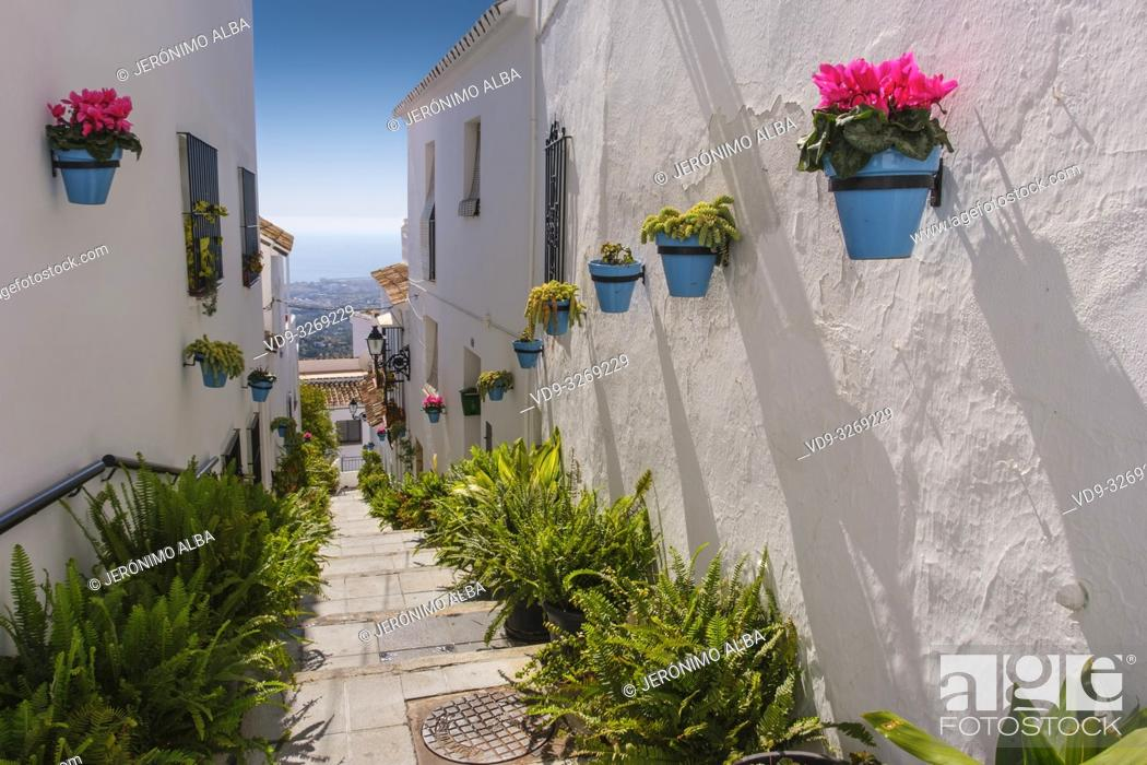 Imagen: Typical street with flowers, white village of Mijas. Malaga province Costa del Sol. Andalusia, Southern Spain Europe.