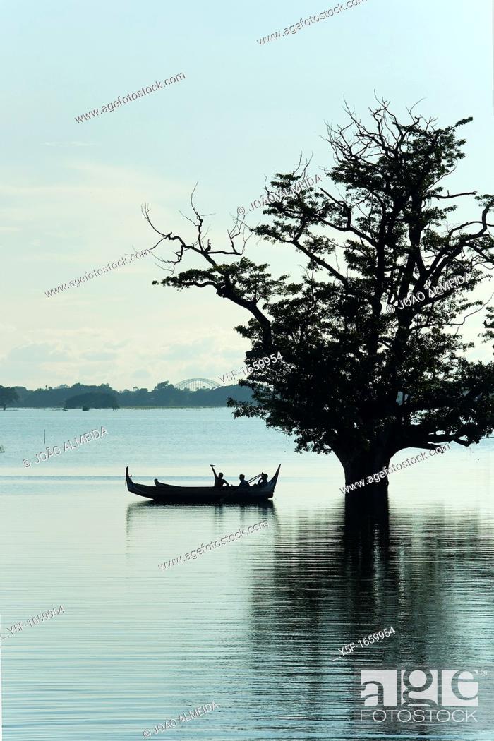 Stock Photo: Boat by flooded tree near U Bein bridge.