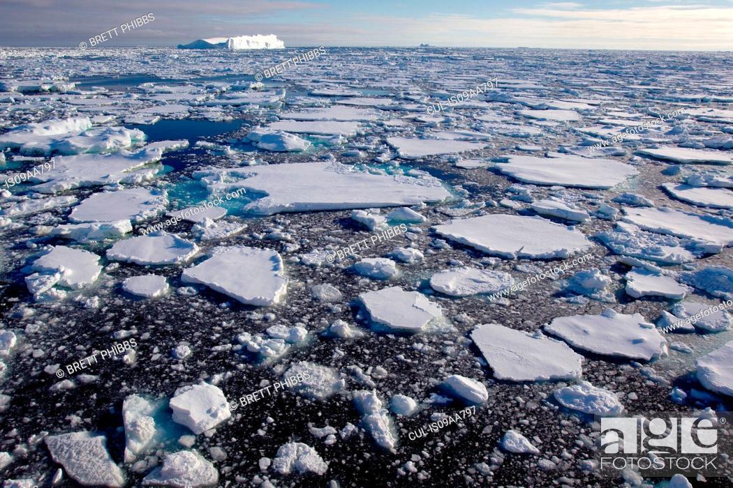 Imagen: Ice floe in the southern ocean, 180 miles north of East Antarctica, Antarctica.
