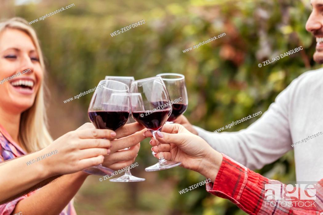 Stock Photo: Happy friends in a vineyard clinking red wine glasses.