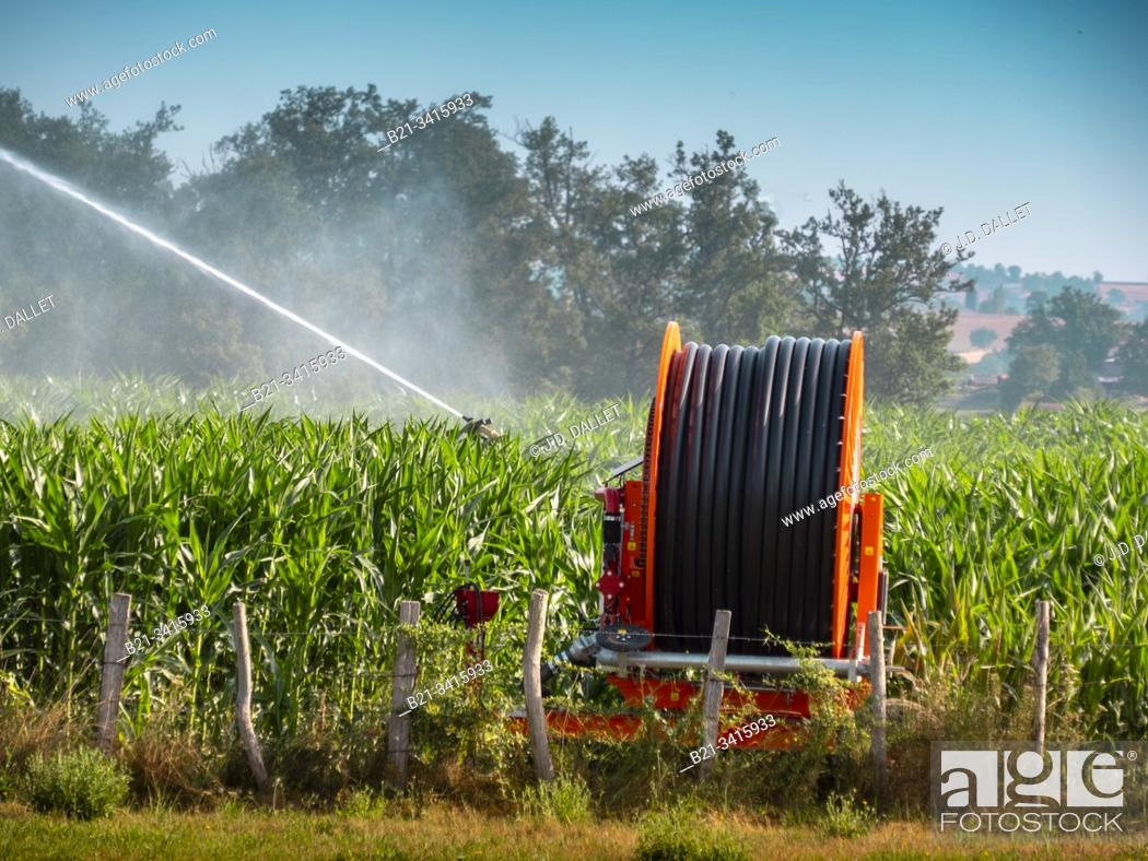 Stock Photo: France, Auvergne, Cantal, watering corn field by Saint Santin.