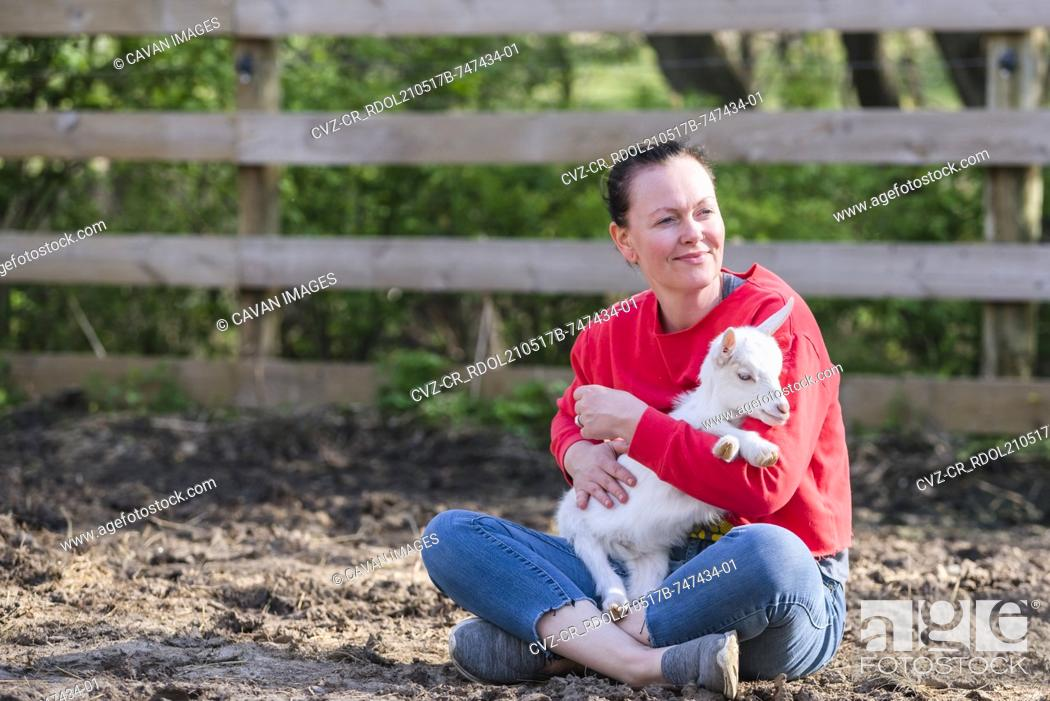 Stock Photo: Woman in red sweatshirt holding a white baby goat on her lap.