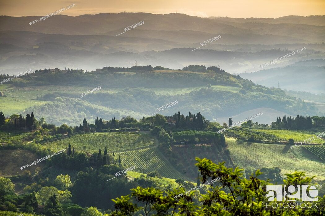 Stock Photo: Panoramic views of Vineyards and fields in SanGimignano, Tuscany, Italy.