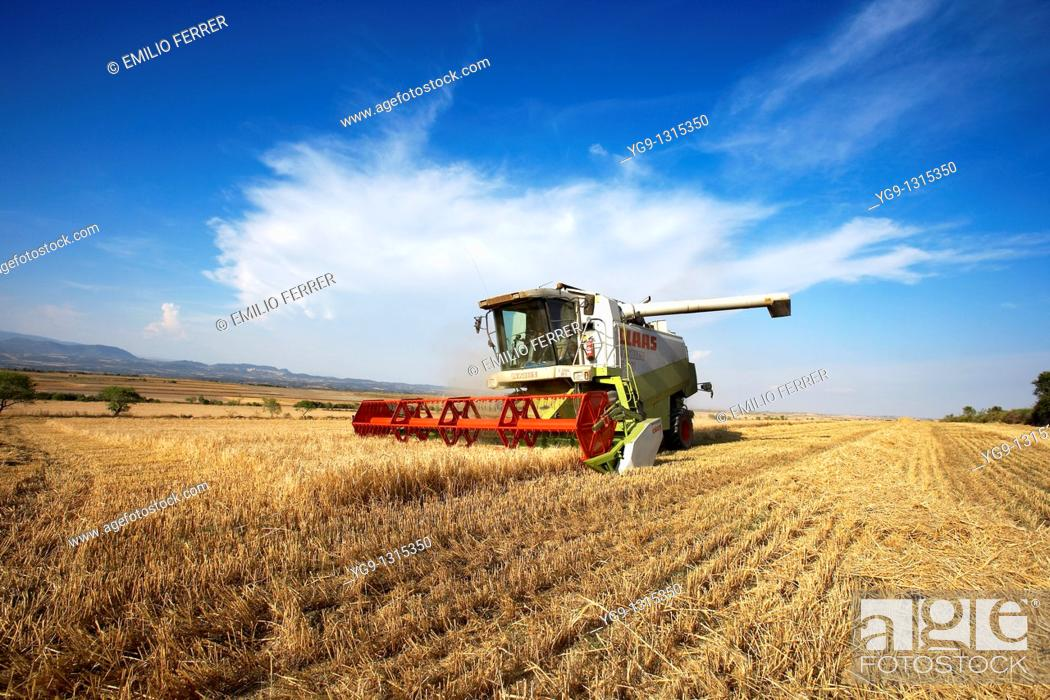 Stock Photo: Combine-harvester on a field of wheat.