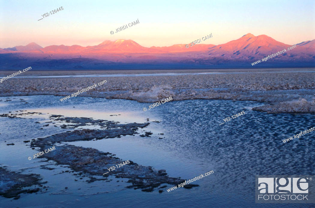 Stock Photo: Laguna Chaxa , Salar de Atacama, Atacama Desert, Chile.