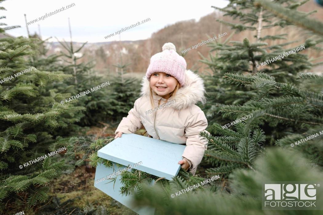 Stock Photo: Happy girl carrying gift box on a Christmas tree plantation.
