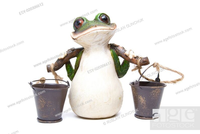 Stock Photo: frog with buckets.