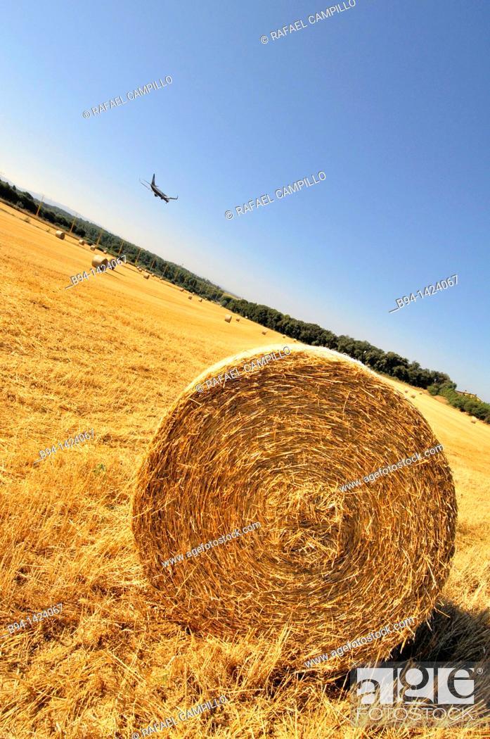 Stock Photo: Straw rolls and plane, Vilobí d'Onyar, near Girona-Costa Brava Airport, Girona province, Catalonia, Spain.