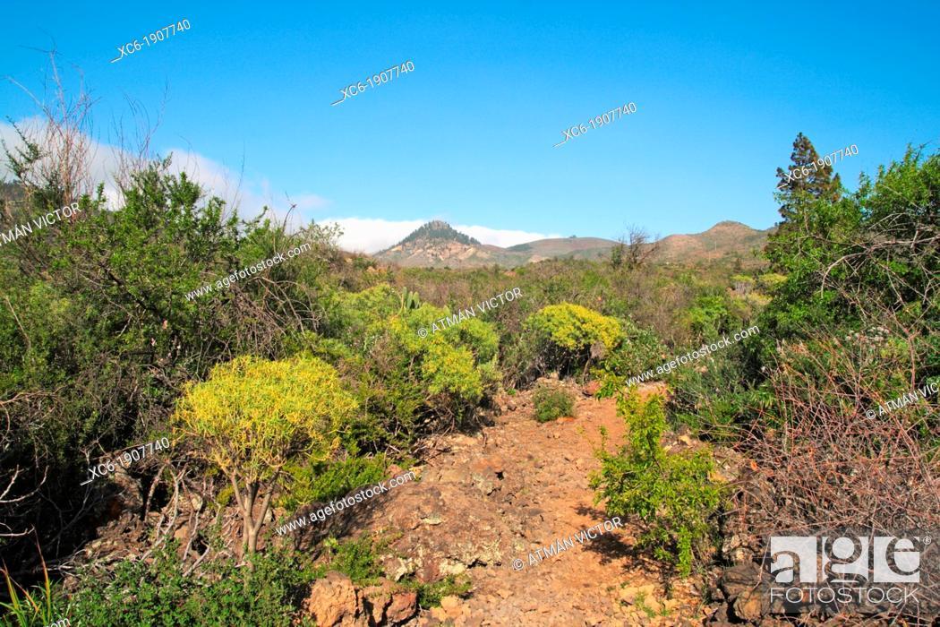 Stock Photo: Beautiful landscape in Santiago del Teide Tenerife.