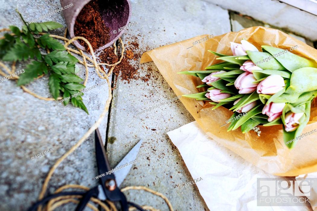 Stock Photo: Directly above shot of tulip bouquet with scissors and pot on concrete floor.