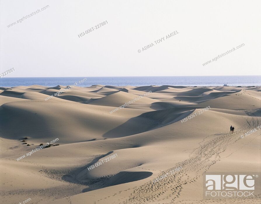 Stock Photo: Canary Islands. Gran Canaria. Maspalomas. Sand dunes.