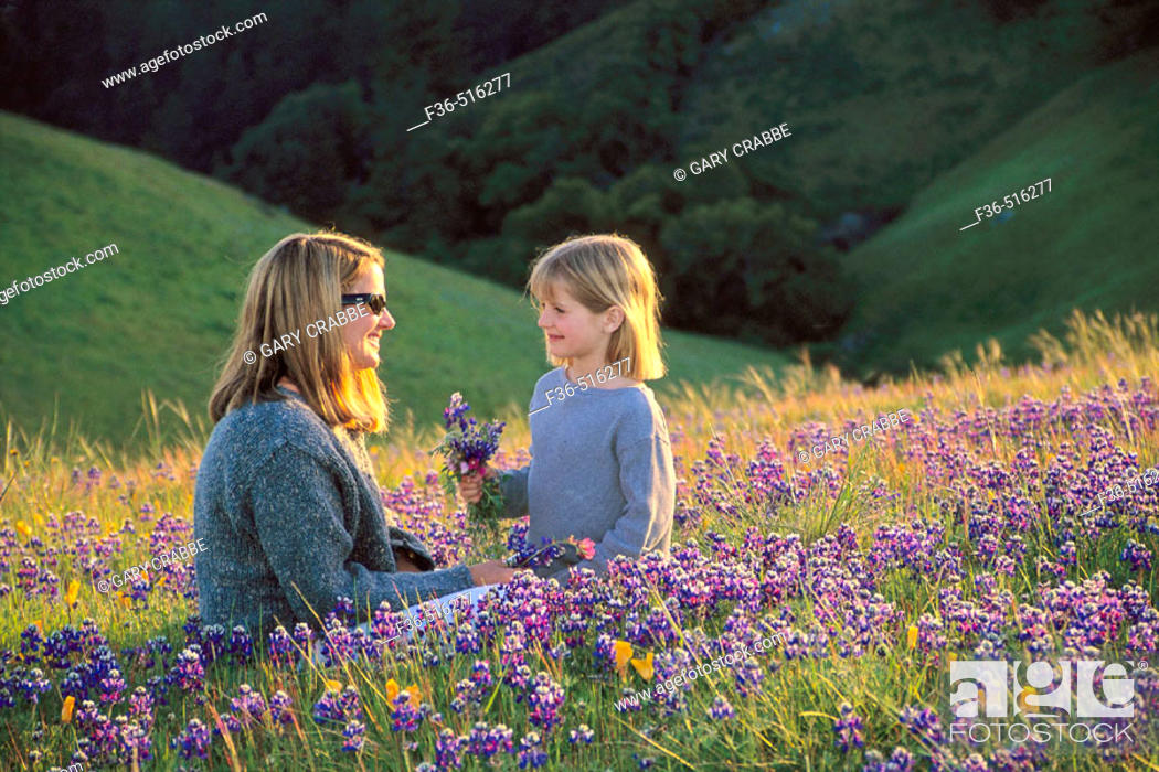 Stock Photo: Mother and daughter in field of colorful wildflowers on hillside in spring, Bolinas Ridge, Marin County, California.