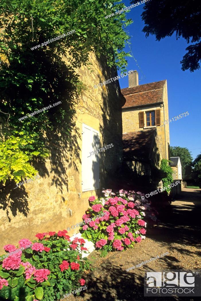 Stock Photo: Tannay, Nievre department, region of Burgundy, center of France, Europe.