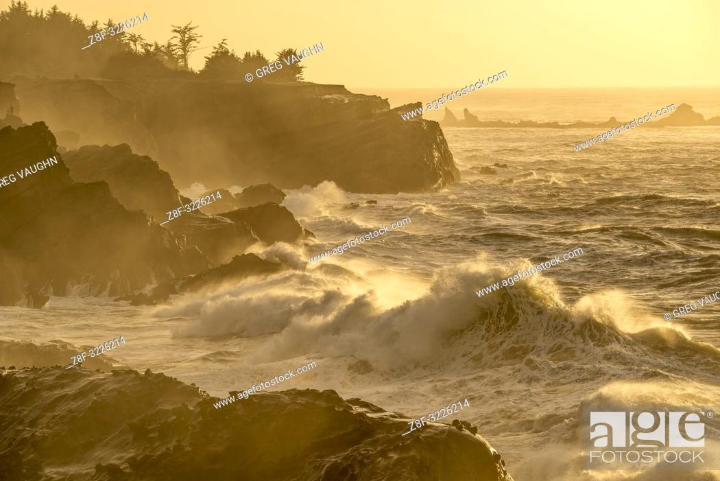 Imagen: Waves crashing on the rocks at Shore Acres State Park, southern Oregon coast.