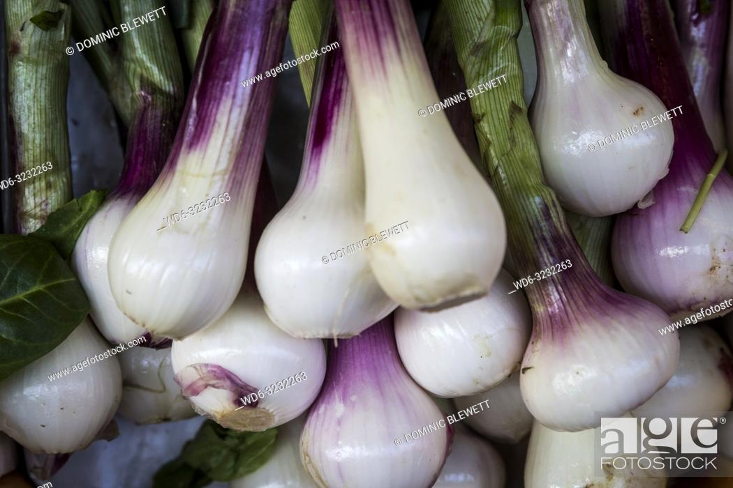 Imagen: Piles of fresh torpedo onions for sale at a market in Bologna, Italy.