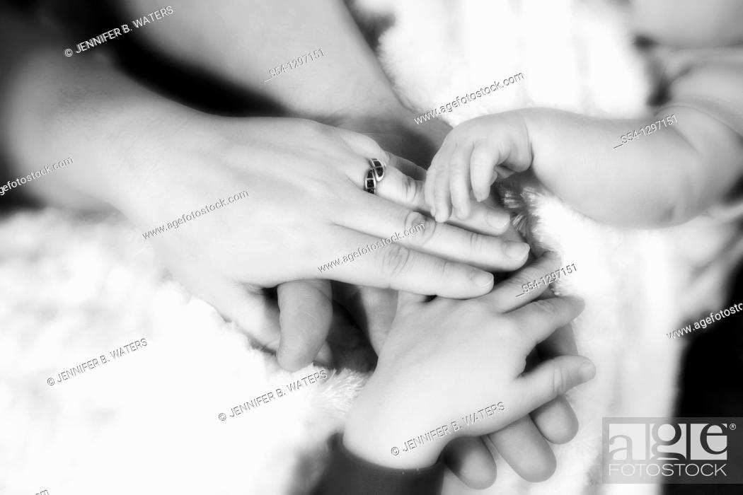 Stock Photo: The hands of a mother, father, toddler, and newborn.