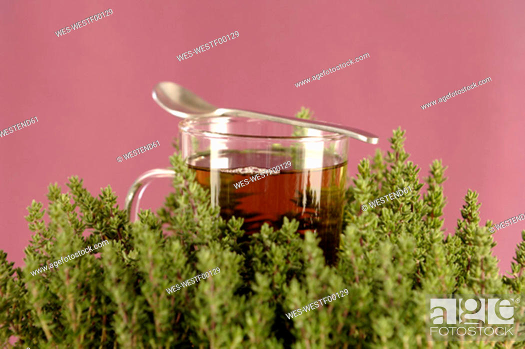 Stock Photo: Glass with herbal tea and thyme.