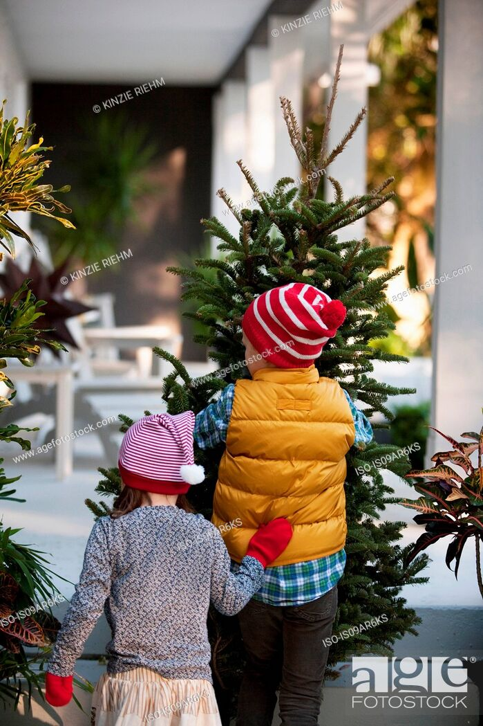 Photo de stock: Girl and boy carrying christmas tree.