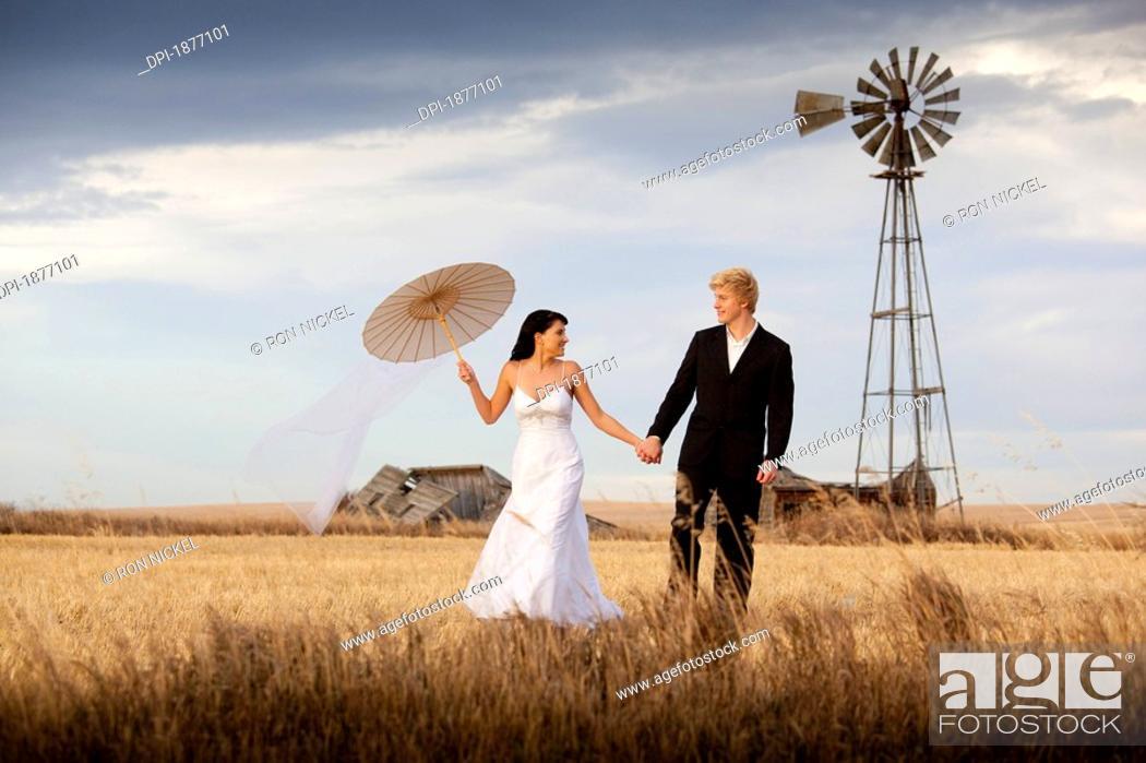 Stock Photo: three hills, alberta, canada, a bride and groom walking through a farm field.