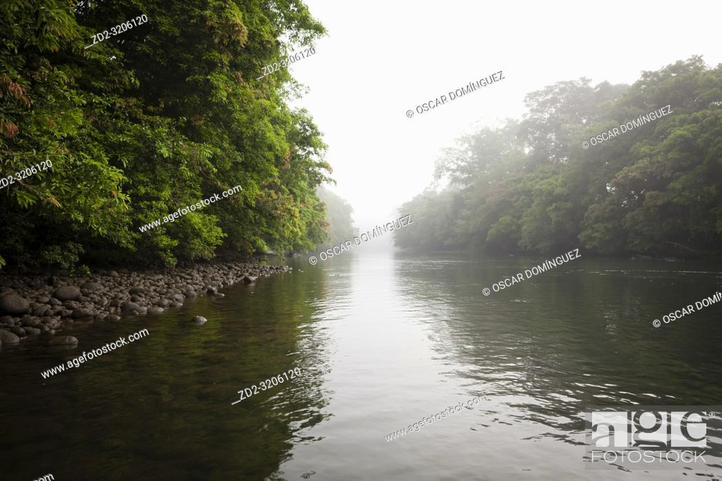 Imagen: Dense rainforest surrounding Puerto Viejo river. Heredia province. Costa Rica.