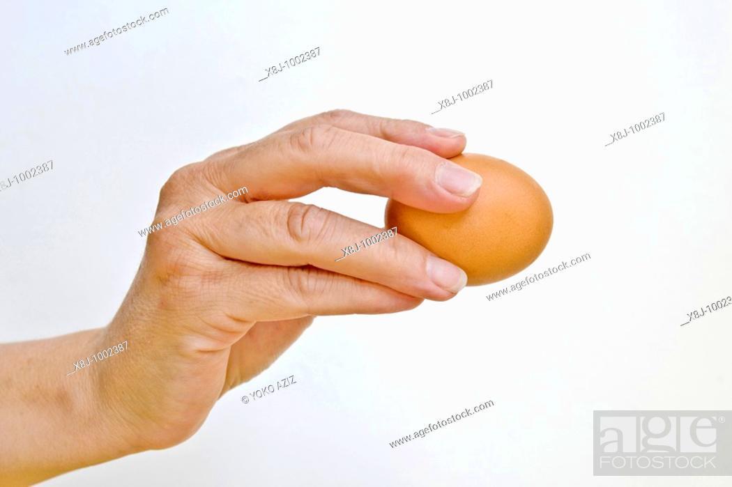 Stock Photo: Eggs.