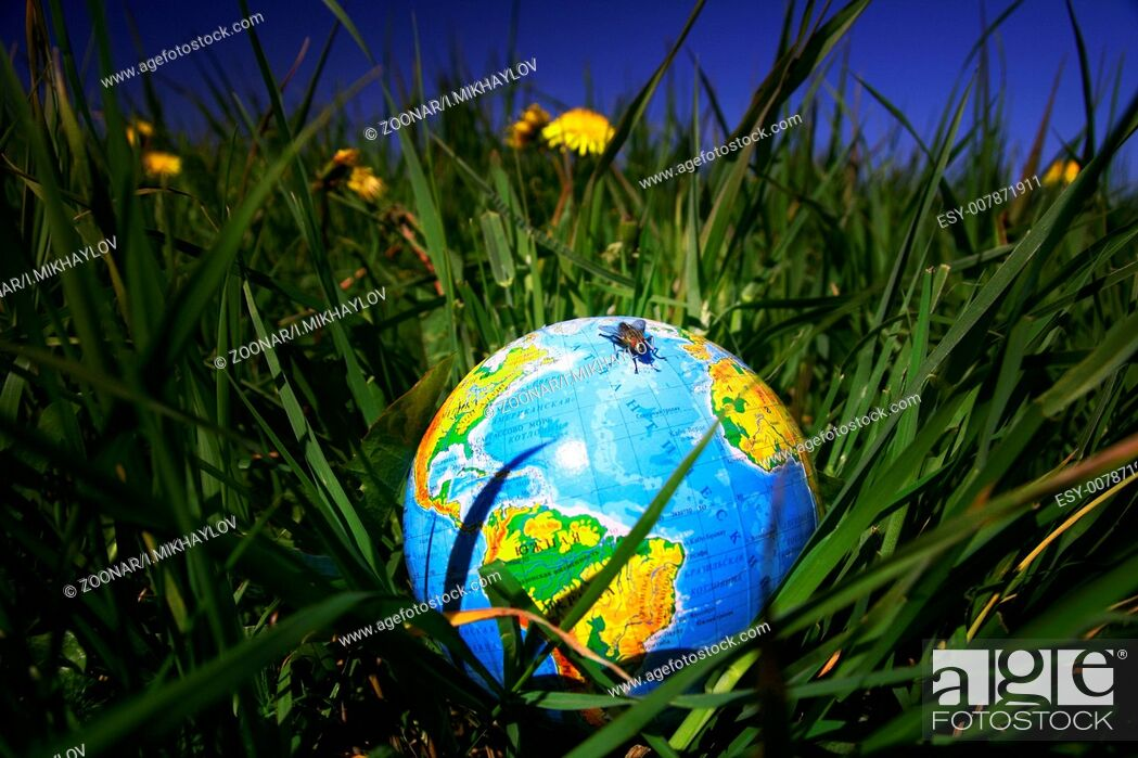 Stock Photo: globe in grass globe in grass.