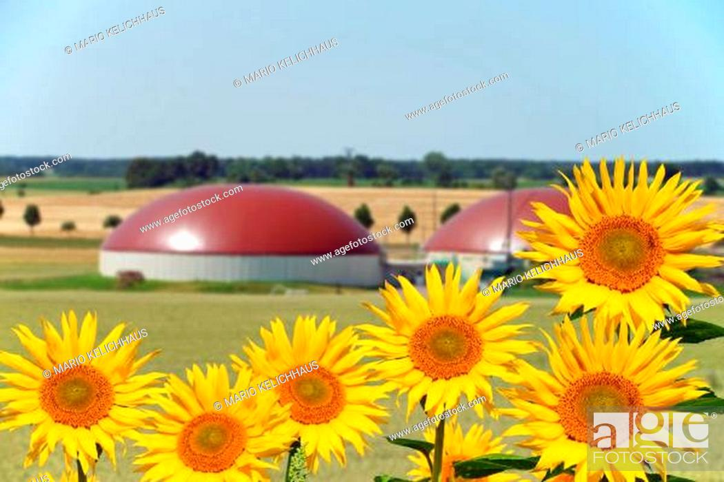 Stock Photo: Biogas facility.