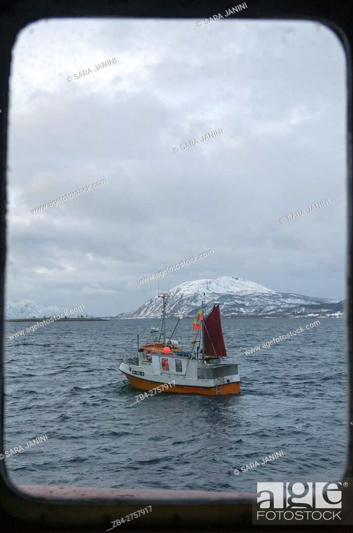 Stock Photo: Skrei fishing, Myre, Vesterålen Islands, Nordland County, Norway, Europe.
