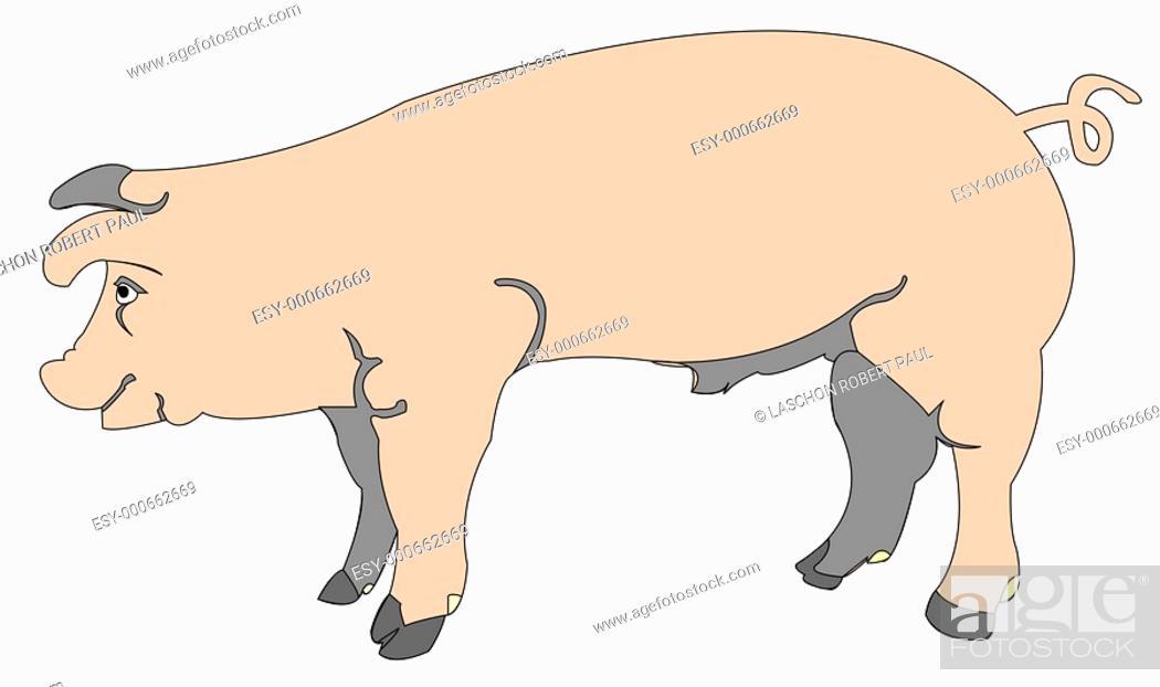 Stock Photo: cartoon of a pig.
