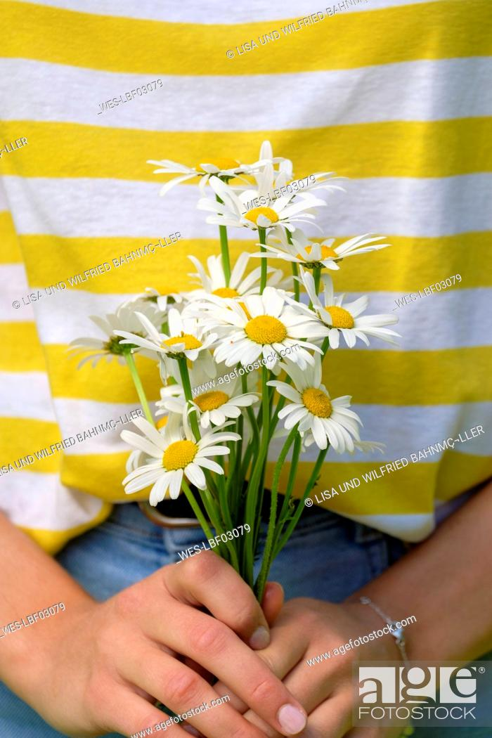 Stock Photo: Close-up of young woman holding oxeye daisies in park.