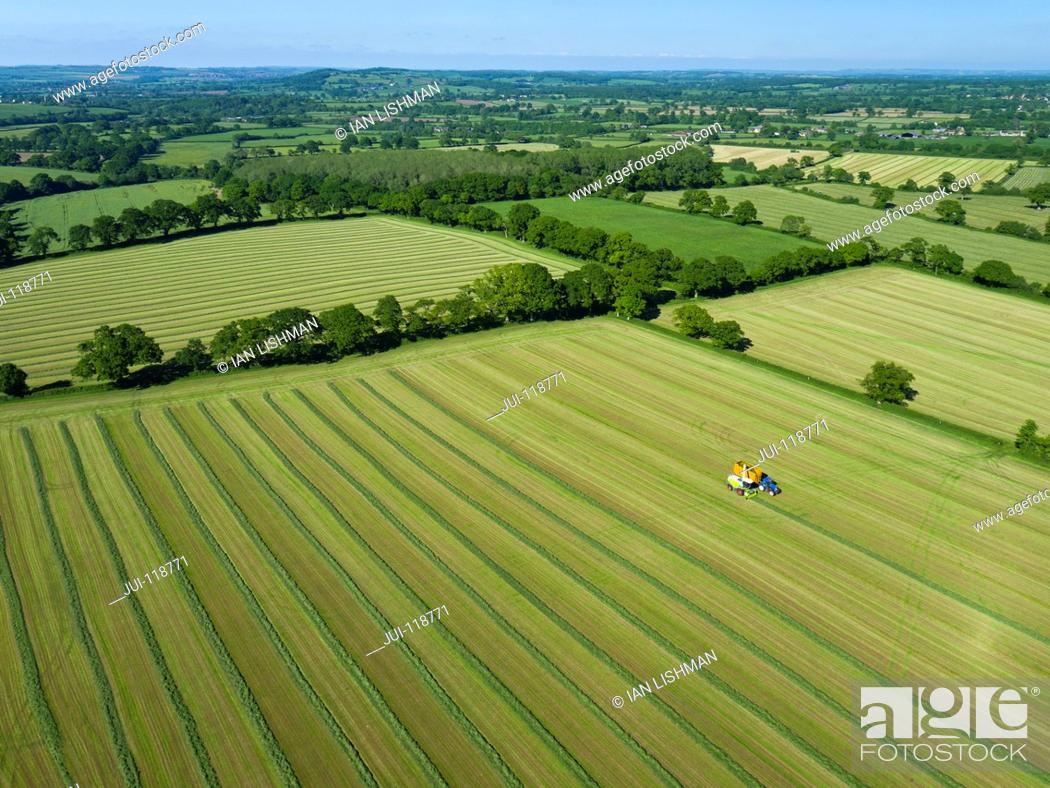 Stock Photo: Aerial view of summer grass silage fields being harvested, farmland and country landscape.