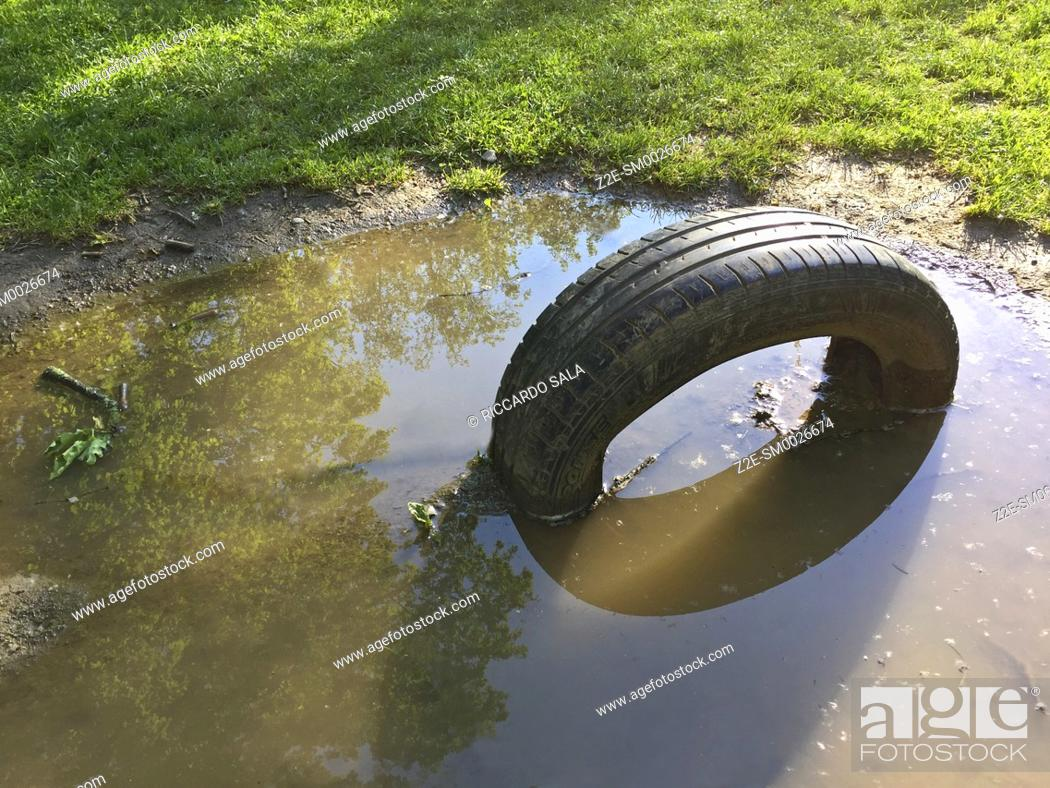 Stock Photo: Abandoned Old Tire Laying in a Puddle. . . .