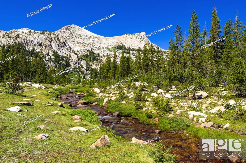 Imagen: Unicorn Creek under Unicorn Peak, Tuolumne Meadows, Yosemite National Park, California USA.