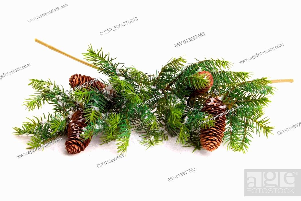 Stock Photo: Cone and christmas tree isolated on white.