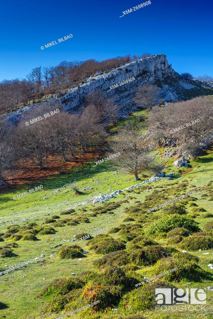 Imagen: Mountain meadow and forest. Urbasa-Andia Natural Park. Navarre, Spain, Europe.