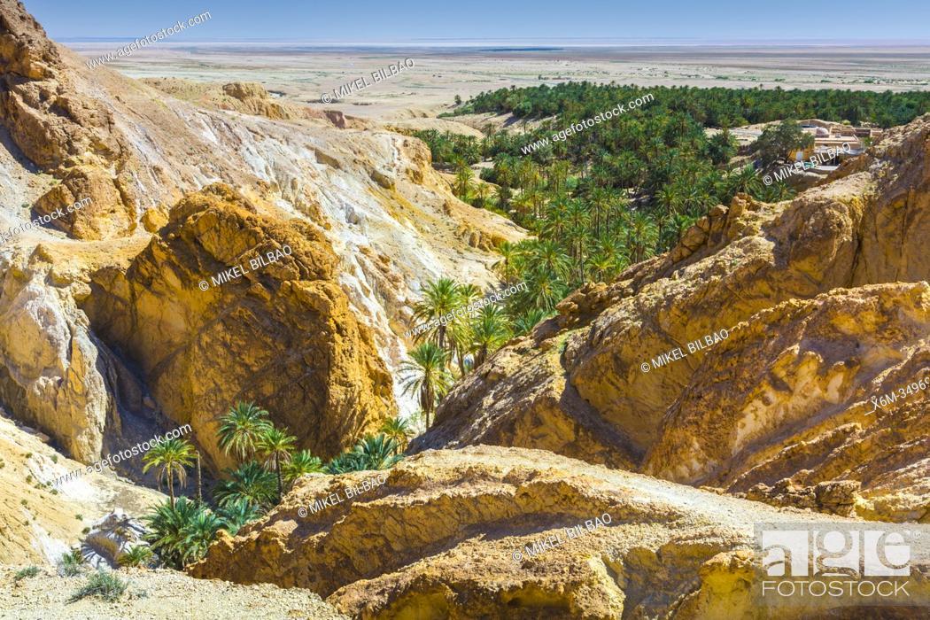 Imagen: Mountain oasis. Chebika. Tunisia, Africa.